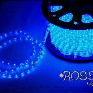 outdoor rope lights blue led