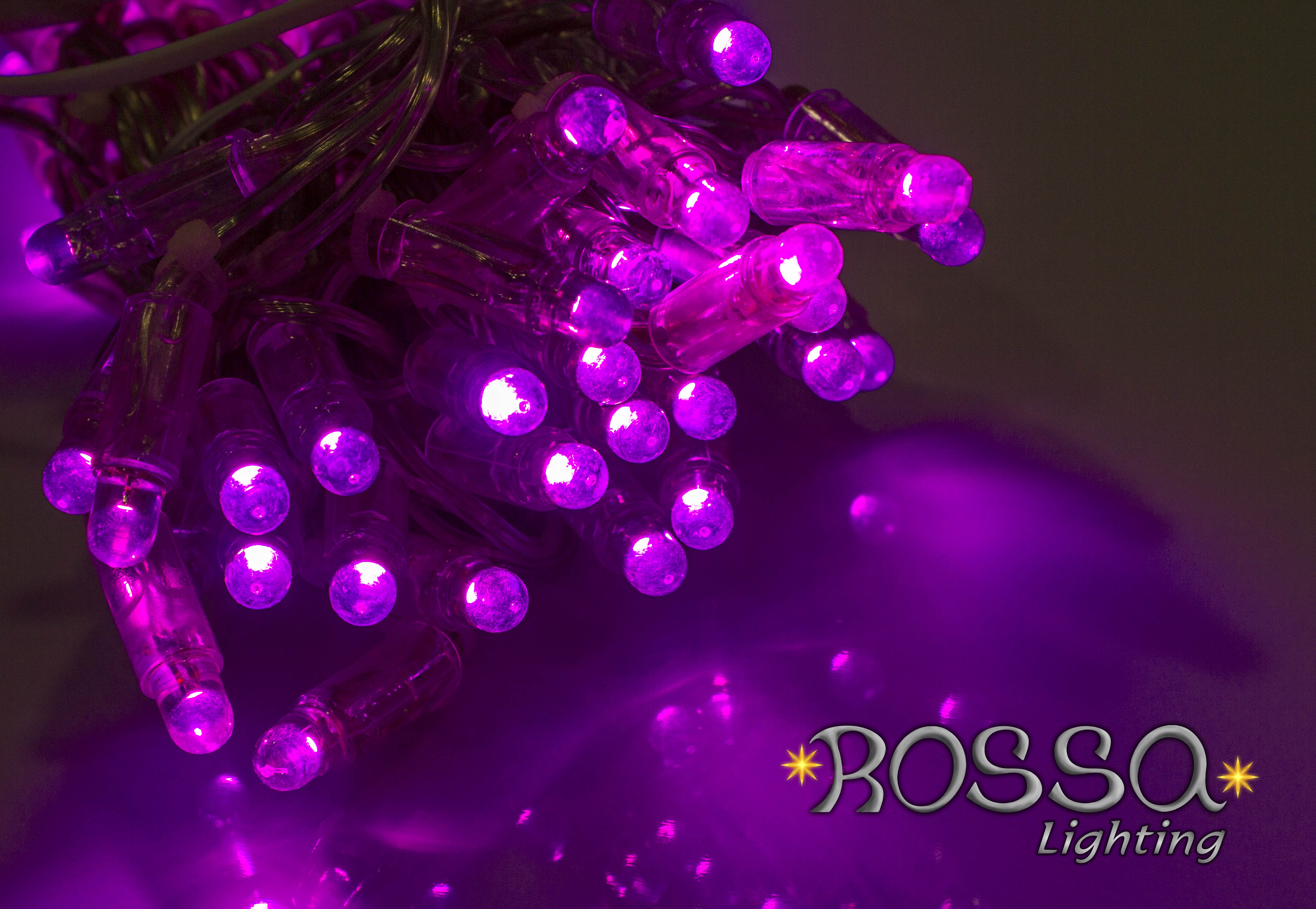 String Lights - Purple String Lights LEDS - Clear Cable