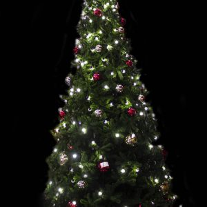 Christmas Tree - Natural Range - 4mtr