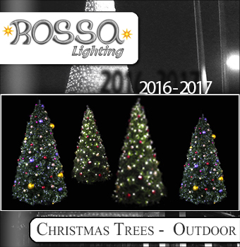 Christmas Trees Outdoor