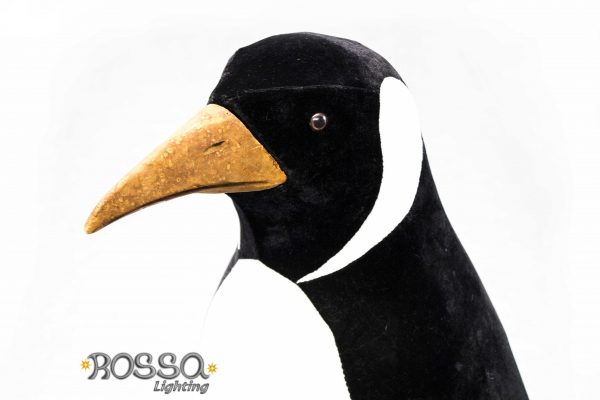 norma-female-penguin-rl-aa-004-2